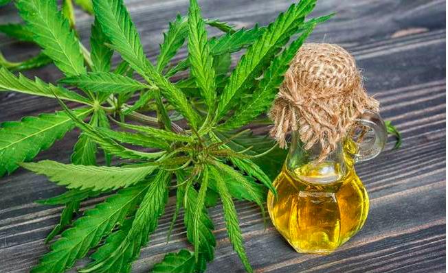 Химия без химии из конопли марихуана в быту