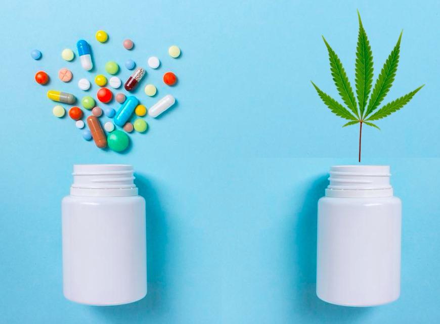 Антибиотики и конопля что происходит с мозгом при курении марихуаны